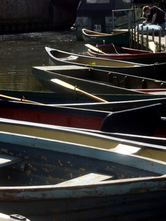 Rowing boats (and one canoe) at Farncombe Boat House