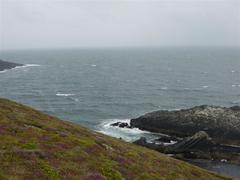 Channel between Bird Island and the headland